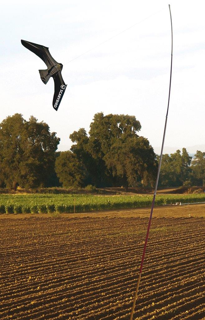 Scarybird linnunpelätinleijasetti 9 m tangolla
