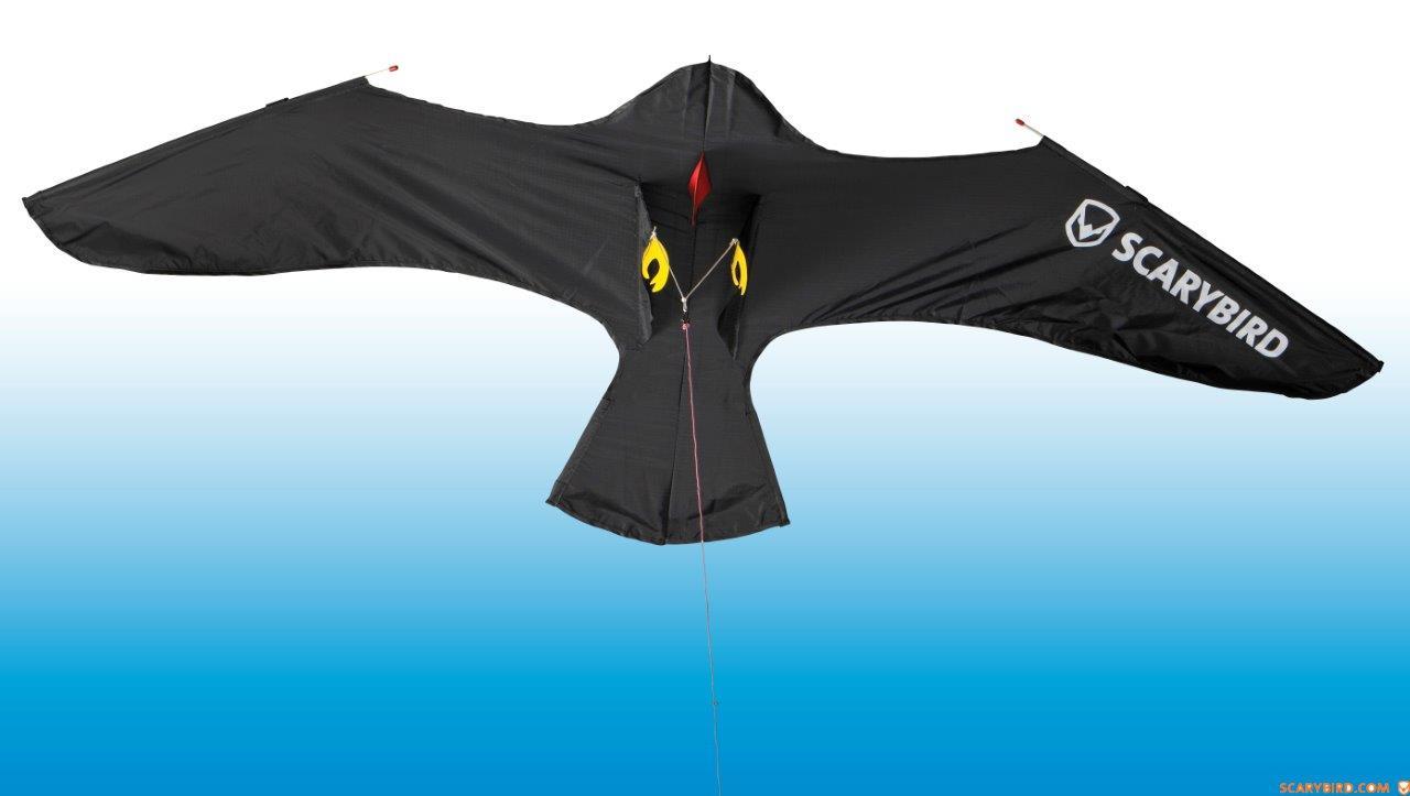 Scarybird linnunpelätin, leija ja kiinnitysosat VARAOSA