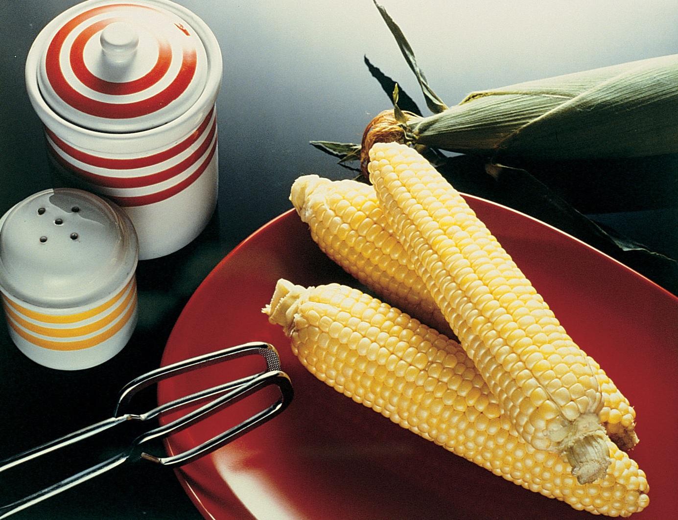 Maissinsiemen SC Sweetness (se+), 1000siementä,peitattu