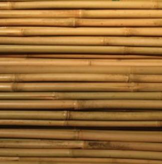Tukikeppi bambu